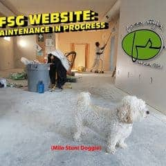 Website Maintenance in progress